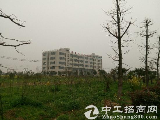 含山附近 医药科学院产业园区现有厂房出租