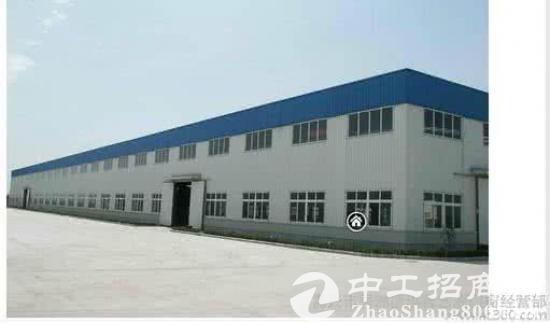 东麒路一楼3500平米高8米带装卸平台仓库-图5