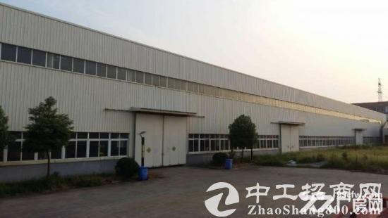 东麒路一楼3500平米高8米带装卸平台仓库-图3