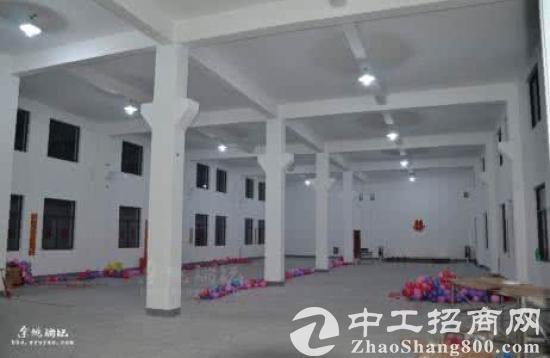 二楼到五楼850平米新建标准厂房或仓库出租图片5
