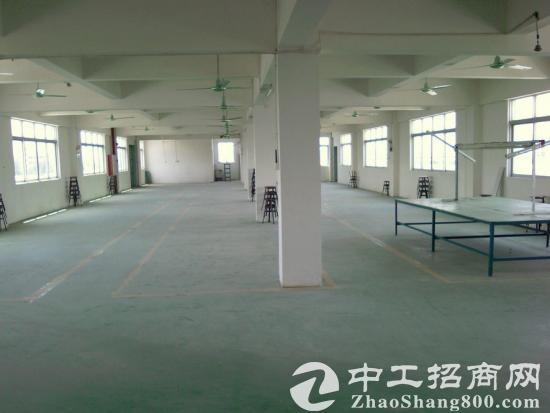 二楼到五楼850平米新建标准厂房或仓库出租图片2