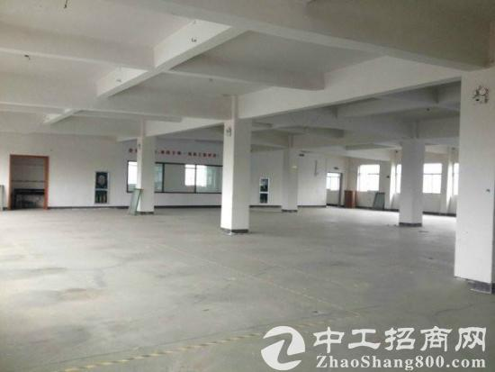 二楼到五楼850平米新建标准厂房或仓库出租图片4