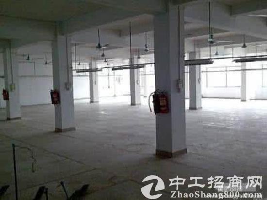 二楼到五楼850平米新建标准厂房或仓库出租图片3