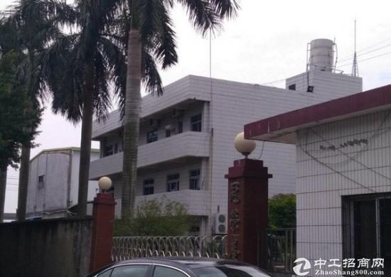 东坑带集体证6000平米标准厂房出售