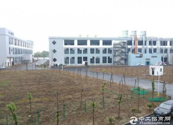 出租六安舒城全新新能源汽车标准厂房2500平