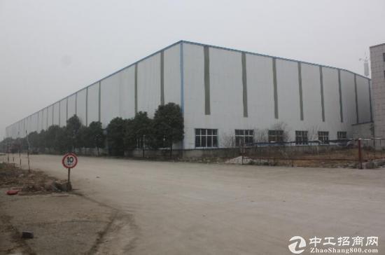 新建钢结构厂房19000平+办公楼5500平方