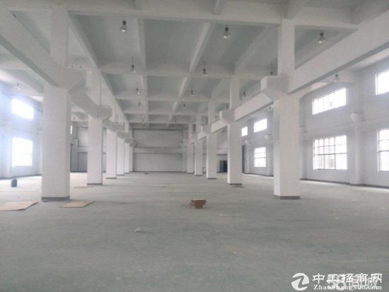 布吉龙岗大道2600平7米高独立院子厂房仓库出租-图4