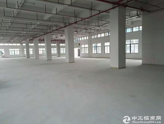 横岗地铁站工业园区仓库一楼2300平,层高8米,可分租-图2