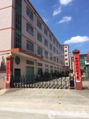 龙岗同乐浪背一楼498平米五金厂房仓库17元出租图片4