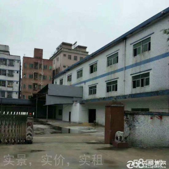 龙岗龙东,同乐附近一楼850平方厂房仓库出租图片4