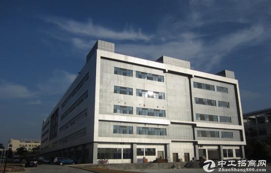 德清10亩20亩30亩工业厂房出售