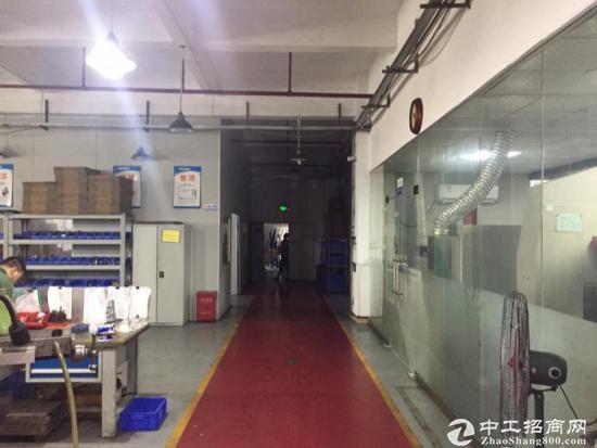 龙岗中心城650平办公贸易仓库厂房出租-图5