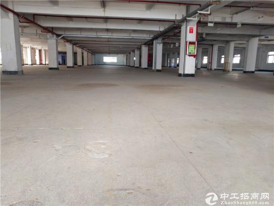 横岗 四联社区原房东4层厂房17000平方低价出租-图2