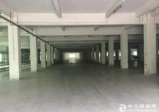观澜6500平米一楼厂房或仓库出租 有卸货平台-图2