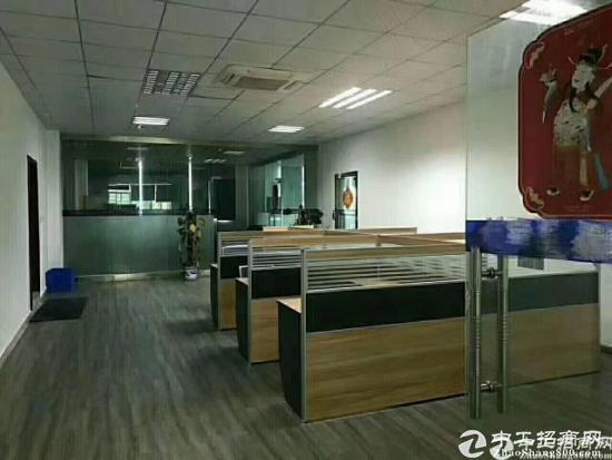 龙岗爱联电商办公小仓库5000平招租图片2