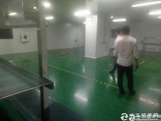 深圳宝安松岗东方大道旁 原房东独门独院厂房