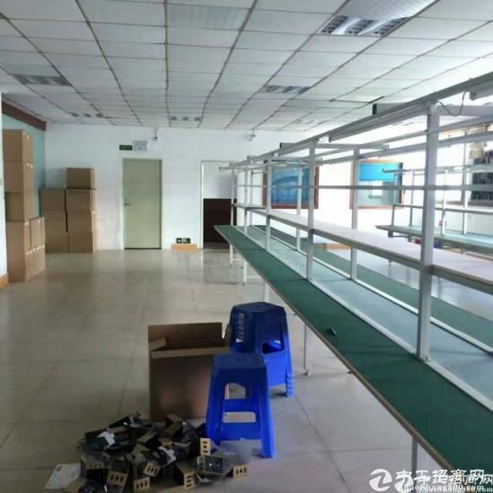 坪山 石井新出三楼带装修厂房420平招租-图2