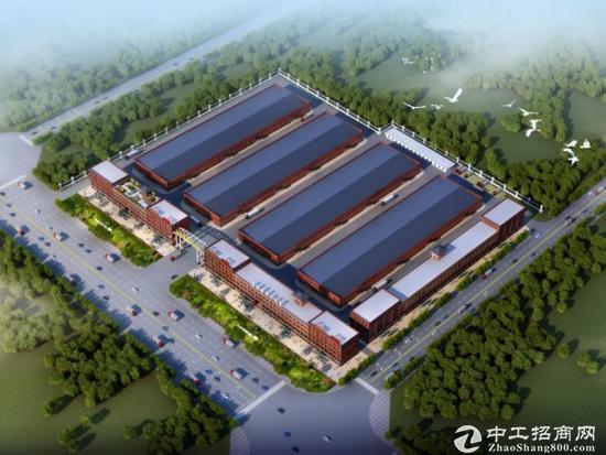青山湖芒果电商产业园40000方仓库招商