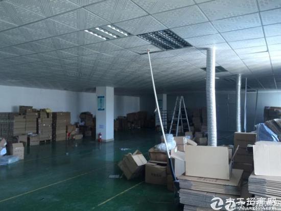 龙华新出精装修办公仓库550平米标准厂房无公摊