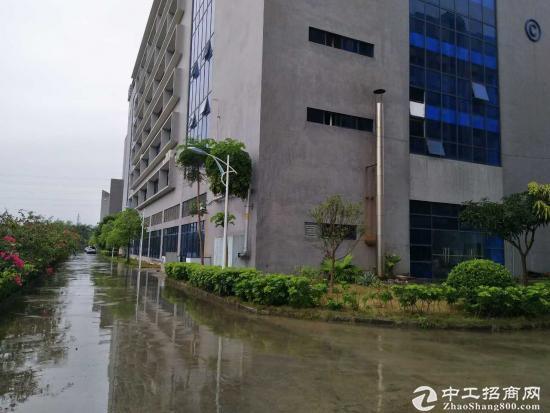 龙岗 宝龙工业区 带红本厂房1000平方出租-图2