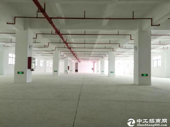 嘉兴全新厂房12000平米出售