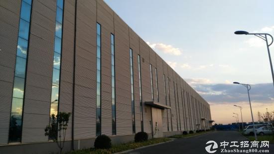 津南开发区厂房
