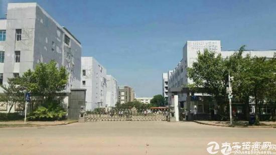 福永新出带红本原房东厂房13500平方火热招租-图3