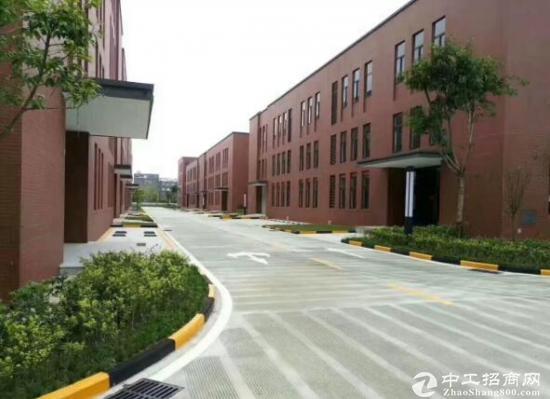 郫县现代工业港 标准钢结构厂房出售