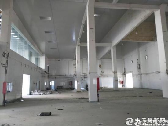 西丽茶光10米高钢构厂房招租20000平方