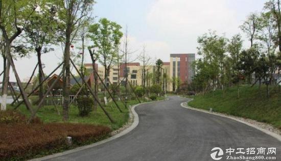 (伙伴)双证齐全、环评已过、花园式多层厂房可做总部