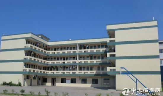 成都新都工业东区厂房3000至10000平米出租出售可分割