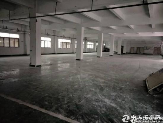 坪山大工业区一楼2300平方厂房出租