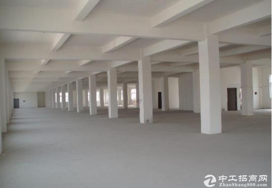 园区一楼全新厂房3000平米出租 带配套楼