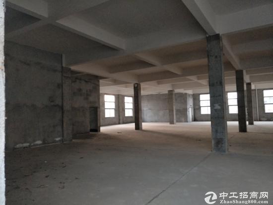 黄冈团风新出独门独院厂房1-3层8000平-图2