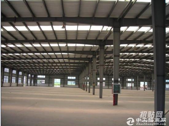 通州标准仓库-图3