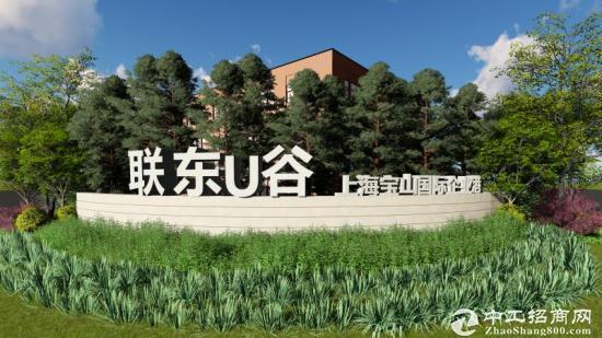沪太路金石路标准厂房104板块有环评可生产-图5