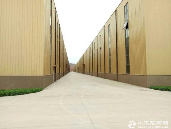 开发区全新独院12000平米单层厂房租售-图2