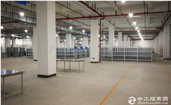 常平元江元一楼标准仓库1600平米招租