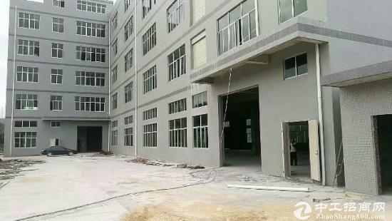 惠州惠阳新建厂房10000平出租