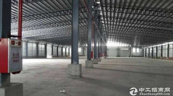 厚街单一层钢构仓库9800平方米招租滴水9米,可做生产