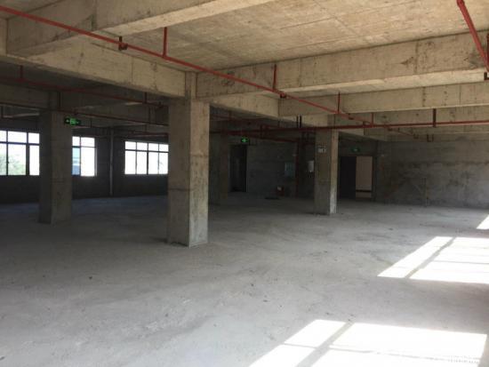 长沙河西工业厂房出售