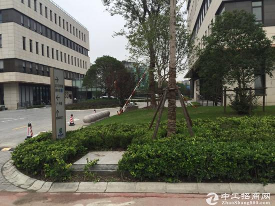 全底楼全天恒温办公研发生产厂房出售 闵行浦江工业
