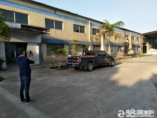 惠阳新圩约场1980平方独院钢构厂房出租