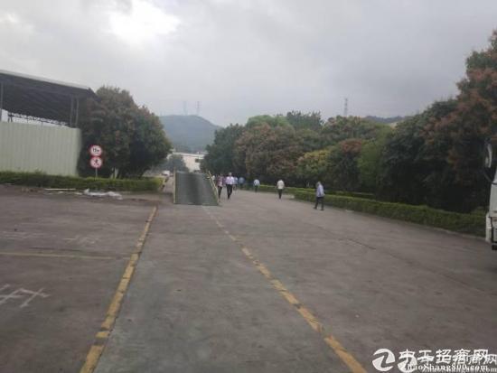 深圳周边10米单一层钢构厂房40000平方米招租
