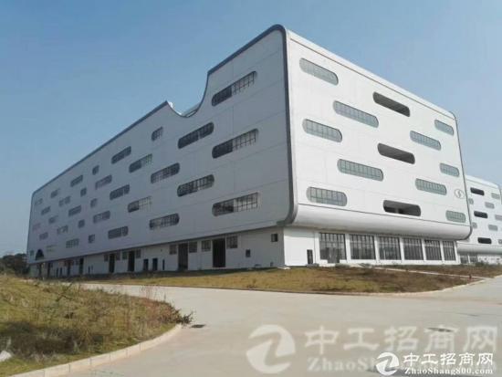 坪山新区保税区大工业区独院仓库280000万平米