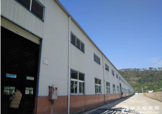 公明桉村新出经典独院单一层厂房3000平方出租