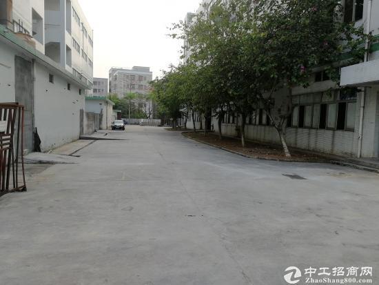 东莞清溪谢坑村一楼800平层高6米可做污染行业
