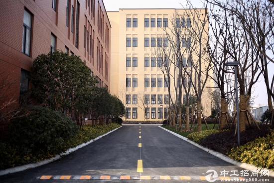 宝山罗泾104板块,研发生产仓储,800~6000平。