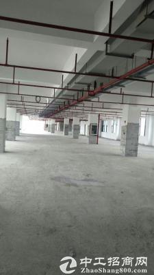 石岩靠近龙华原房东钢构厂房招租1000平方,使用率高