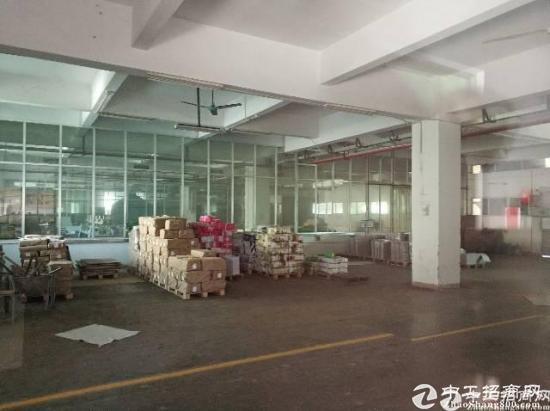 进出口红酒食品地下室仓库层高5.3米位于位于深圳